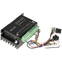 WS55-220 BLDC Motor Driver Controlador DC 48V 500W