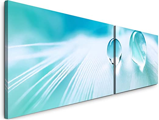 Feder mit Wassertropfen Wandbild in verschiedenen Größen