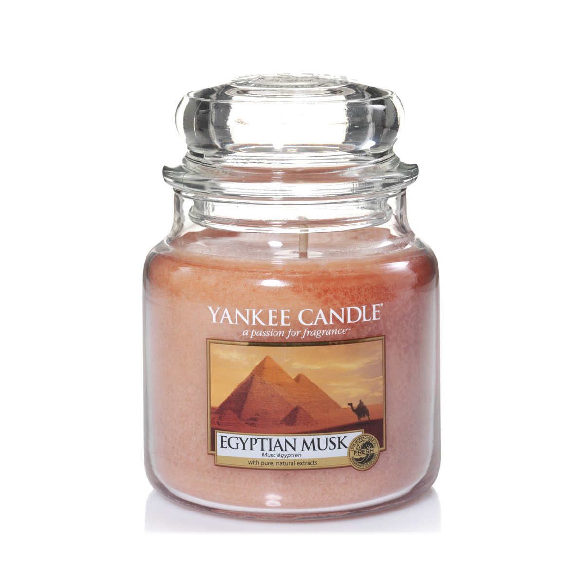 Yankee Candle Sparkling Cinnamon Large 2 Festive Scent, Red, L 2-Wick Tumbler Candle Yankee Candle Company 1125621
