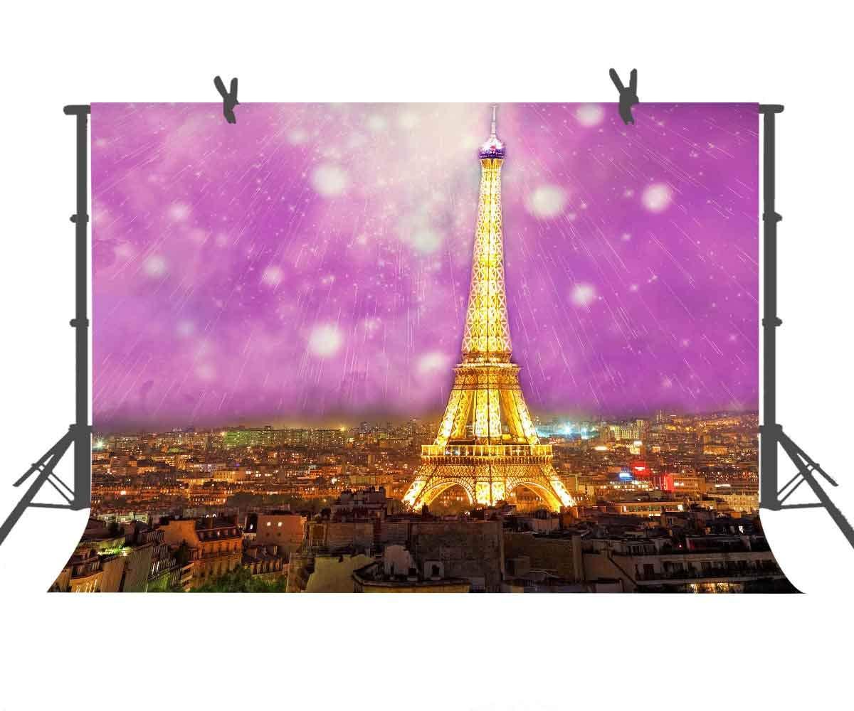 Eiffel タワー写真背景 ゴールドとフクシアピンクパリ 都市写真 子供用 アートスタジオ YouTube背景またはファミリーパーティー背景幕用小道具 9x6FT LXST202   B07GBMGTQF
