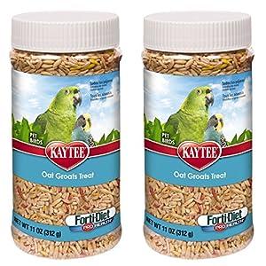 Kaytee Forti-Diet Pro Health Oat Groats Bird Treat, 22 oz 37