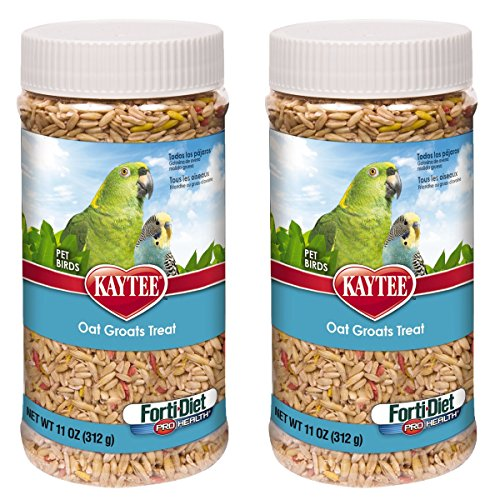 Kaytee Forti-Diet Pro Health Oat Groats Bird Treat, 22 oz