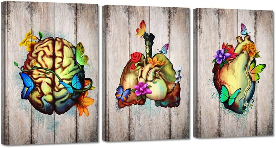 Zlove 3 Pieces Canvas Wall Art Flowery Heart Brain Lungs Human Anatomy Set Medical Science Artwork Stretched and Framed for Medical Clinic Doctor Office Decoration Ready to Hang