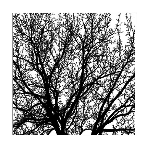 (Yajom Big Trees DIY Silicone Clear Stamp Cling Seal Scrapbook Embossing Album Decor )