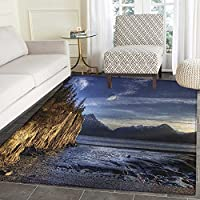 Alaska Area Rug Carpet Beach on the Turnagain Arm near Hope Alaska Photography with Wavy Sea and Sunset Living Dining Room Bedroom Hallway Office Carpet 4x5 Multicolor