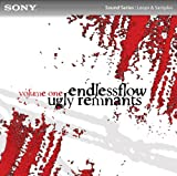 Ugly Remnants: Volume One [Download]