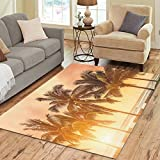 InterestPrint Tropical Coconut Palm Tree Area Rug Floor Mat 7′ x 5′ Feet, Beach Sea Ocean Hawaii Summer SunThrow Rayon Fiber Carpet Rugs for Home Living Dining Room Decoration For Sale