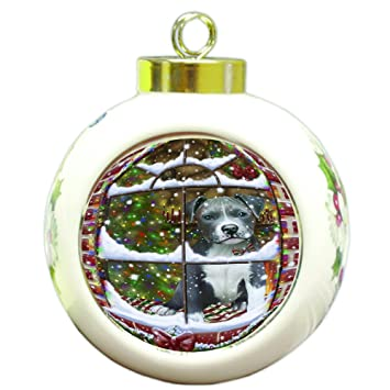 please come home for christmas pitbull dog sitting in window round ball christmas ornament rbpor48418