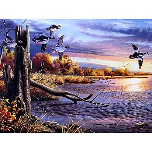 Diy 5D Diamond Painting Kit, Full Drill Sunset Country River Wild Duck Rhinestone Arts Craft Canvas Wall Decor, 17.7 X 23.6 Inch(Frameless) ()