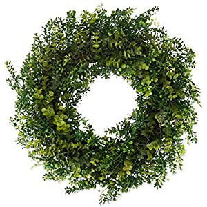 The Wreath Depot Arbor Artificial Boxwood Wreath 22 Inch, Year Round Full Green Wreath, Approved for Outdoor Display, Beautiful Gift Box Included 28