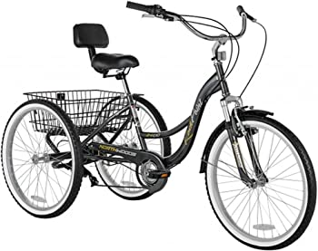 Kent International Adult Tricycle