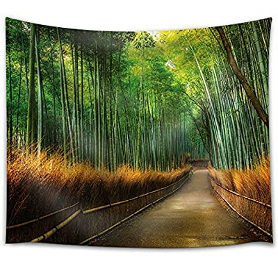 With a Professional Touch, Astonishing Portrait, Path Passing Through a Forest with Tall Bamboos