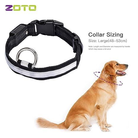 Zoto LED collar de perro luz, alta visibilidad Luz nocturna de ...