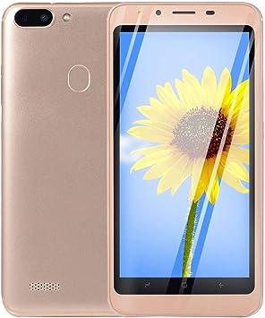 R15-5.0 Pulgadas Smartphone 512mb + 4gb 200W + 200W Cámara Dual Sim Doble Modo de Espera (Dorado)(JIO-S): Amazon.es: Electrónica