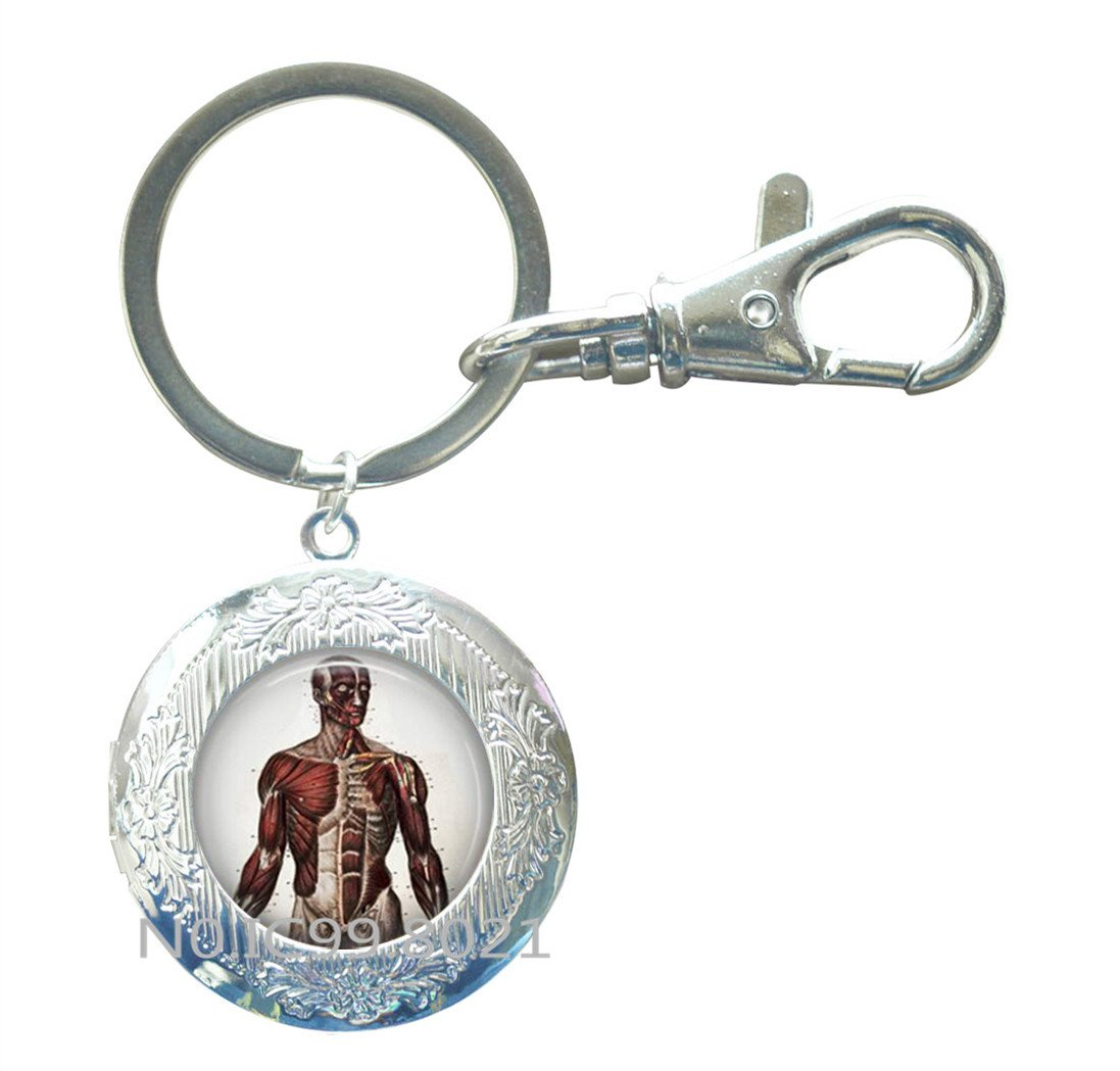 Llavero con anatomía para el cuerpo humano, regalo de ...