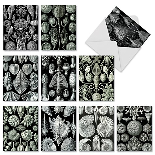10 'Sea World' All Occasion Note Cards with Envelopes, Blank Greeting Cards with White Sea Creatures on a Black Backdrop, Stationery for Wedding, Birthday, Graduation (Mini 4