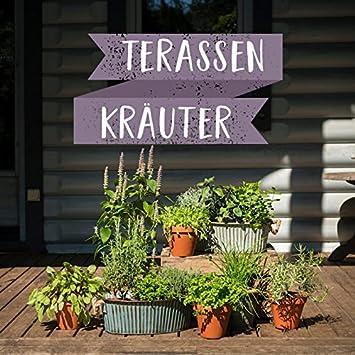 Terrassen Set   Mach Deine Terrasse Zur Wohlfühl Oase   12 Leckere Kräuter  Für Die