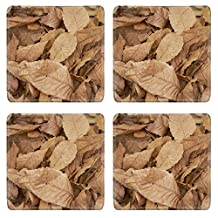 Liili Natural Rubber Square Coasters IMAGE ID 32701109 With the arrival of autumn the ground has been full of leaves in a chestnut forest