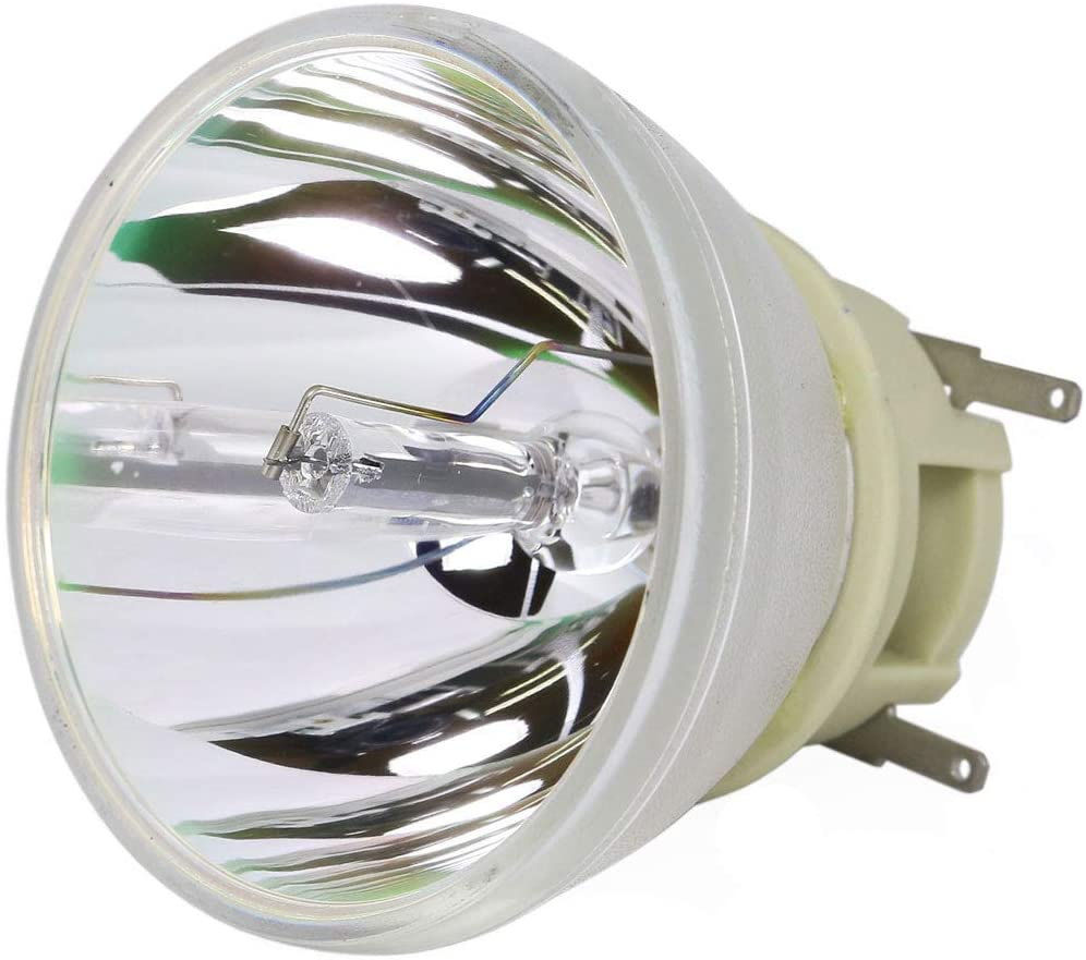 SpArc Platinum for Optoma BL-FP240E Projector Lamp with Enclosure Original Philips Bulb Inside