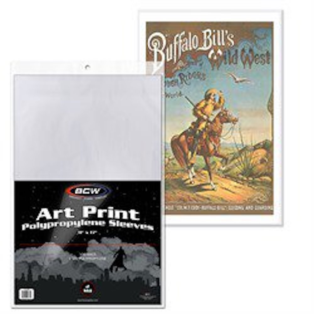 11X17 Photograph Print Protector Sleeves - 1 Package of 100 Sleeves (1 Pack)