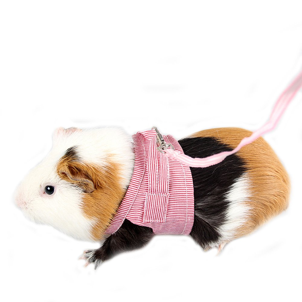 Mummumi Pet Harness, Hamster Harness Vest Leash Pet Traction Rope Chest Straps For Hamster Gerbil Rat Mouse Ferret Chinchilla Glider Squirrel Small Animals Dahu