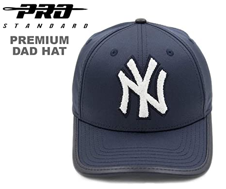 fed43a7738d Image Unavailable. Image not available for. Color  PRO-STANDARD NY Yankees  Official MLB Premium Leather Chenille DAD HAT