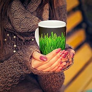 Westlake Art - Coffee Cup Mug - Grass Wheatgrass - Modern Picture Photography Artwork Home Office Birthday Gift - 11oz (x9m-0c4-1f3)