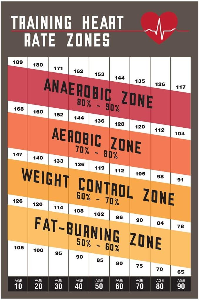 Workout Home Gym Training Heart Rate Zones Gym Fitness Cardio Athletic Aerobic Reference Chart Laminated Dry Erase Wall Poster 24x36