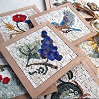 Amazon mosaic tile kit for adults diy take flight 9x9 mini myrijoy mosaic kit diy solutioingenieria Choice Image