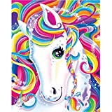 DIY 5D Diamond Painting by Numbers for Pony Unicorn Cross Stitch Full Diamond Embroidery Home Wall Decor,Colorful Horse 12x16inches