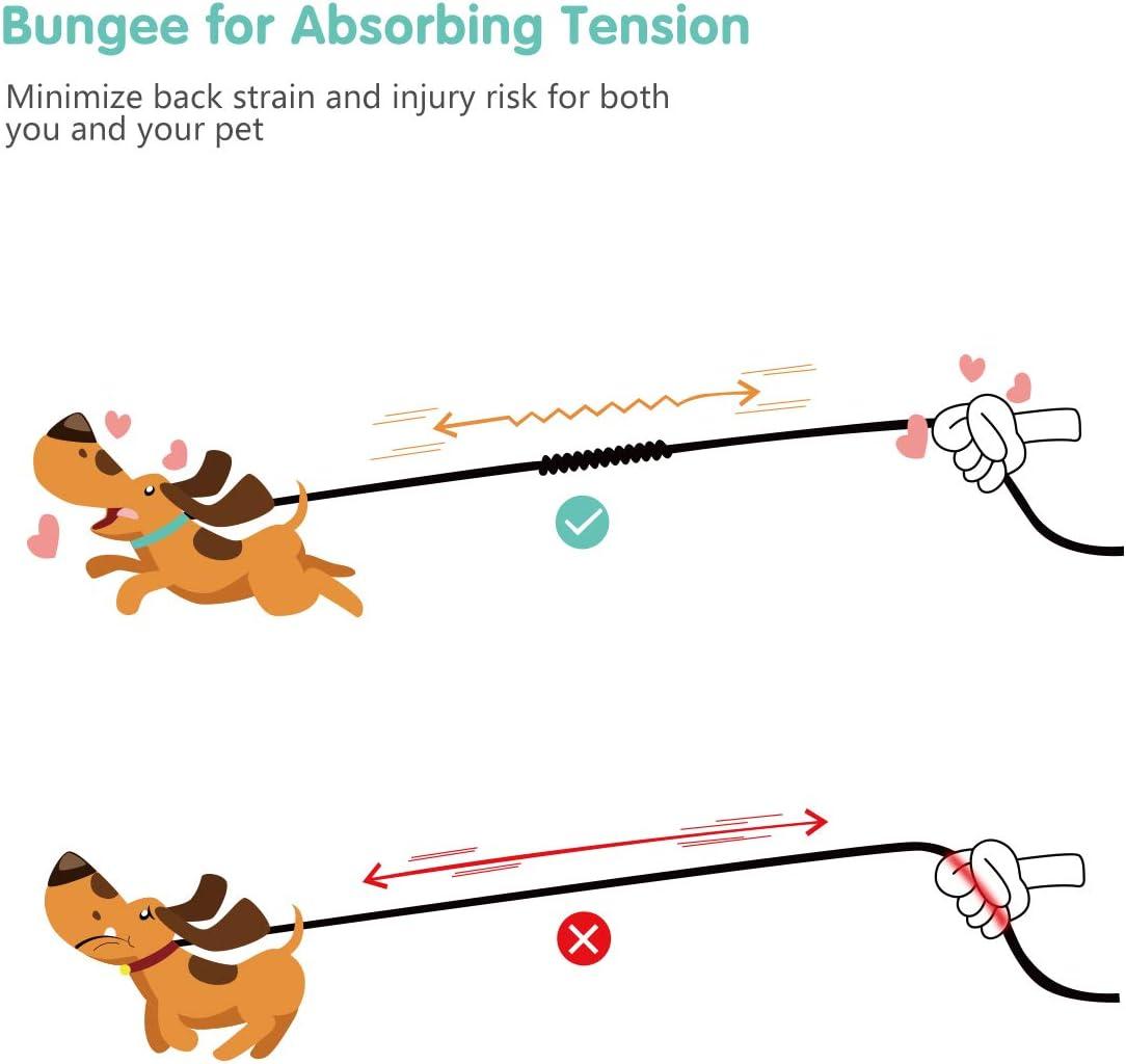 360 /° Schwenkbar Keine Verwicklung Reflektierend Robuste Dual-Hundeleine mit Weichem Griff und Bequemem Sto/ßd/ämpfendem Bungee f/ür Zwei Hunde POPETPOP Hundeleine Doppelleine Verstellbare
