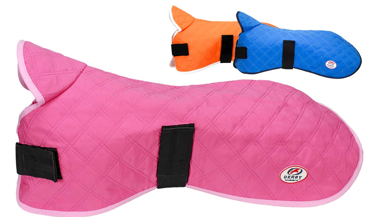 Derby Originals Hydro Cooling Dog Jacket by (Small, Pink)