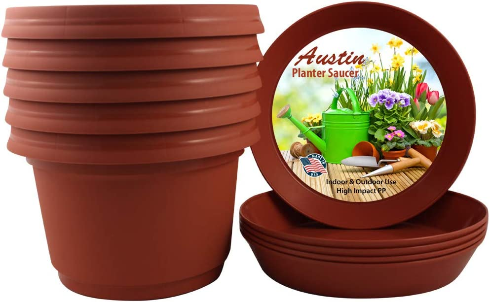 Seed Starter Pot with Saucer Colorful Planter Flower Pot Black Colored Polypropylene Case of 5 Austin Planters /& Saucer 9 inch Seedling Pot Planter Nursery Pot Plant Container Plastic Planter