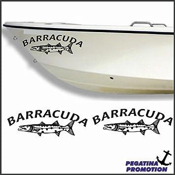 2 X Baracuda Name Aufkleber Aus Hochleistungsfolie Viele Farben Zur Auswahl Angler Angelboot Sticker Boot Boote Beschriftung Bug Heck Fische Angeln Schlauchboot Nautic See Fischer Bootsbeschriftung Bootbeschriftung Fischen Sticker Auto