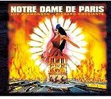 Notre-Dame de Paris Live Palais Des Congres de Par
