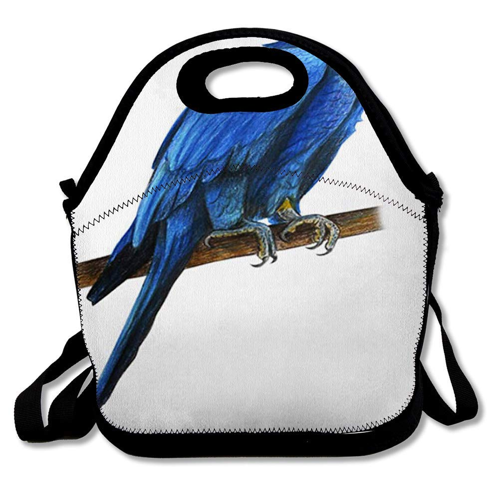 Reusable Lunch Bag for Men Women Feathers Blue Tropical Hyacinth Macaw Drawing Anodorhynchus Hyacinthinus Parrot Ara Beak Big Design Insulated Lunch Tote for Travel Office School