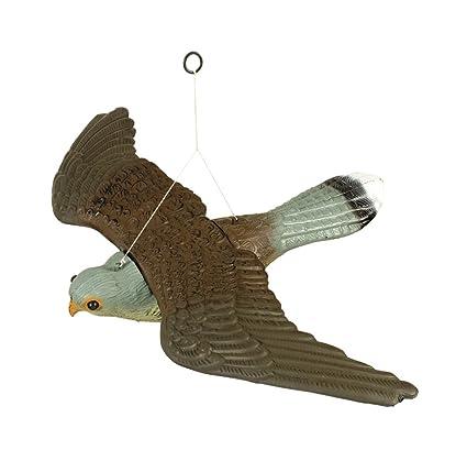 Halcón anti aves