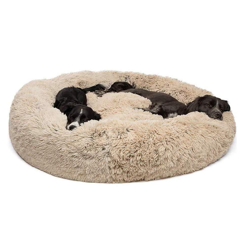 Image result for comfy calming dog bed