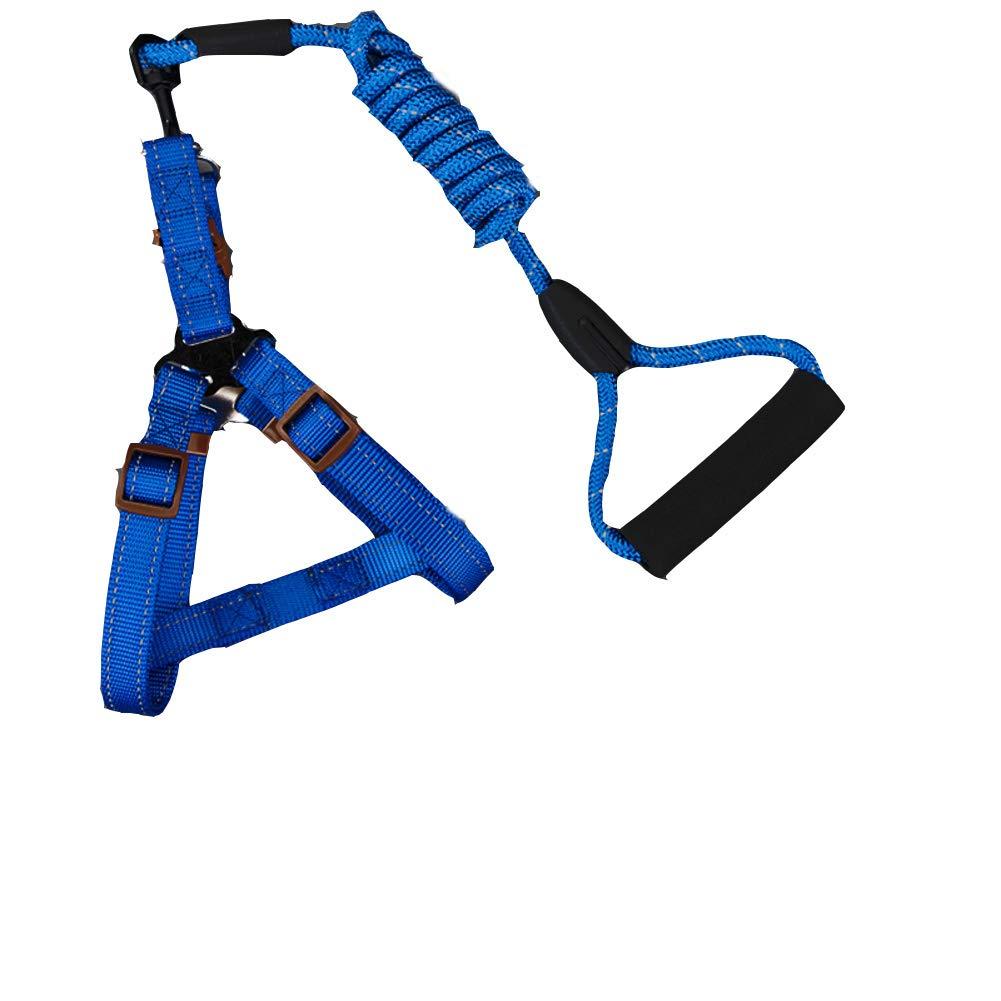 blueeA XSDog Leash,Reflective Leash,ShockProof Climbing Nylon Leashsuitable for Small & MediumSized DogsPinkd L
