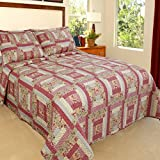 3 Piece Patchwork Bright Paisley Quilt Set Queen Size, Featuring Colorful Geometric Straight Lines Checkered Tiny Grasses Bedding, Classic Bold Artful Box Blocks, Stylish Girls Bedroom, Pink, White