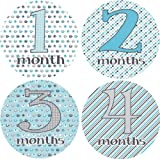 Marching Elephants Monthly Baby Bodysuit Stickers