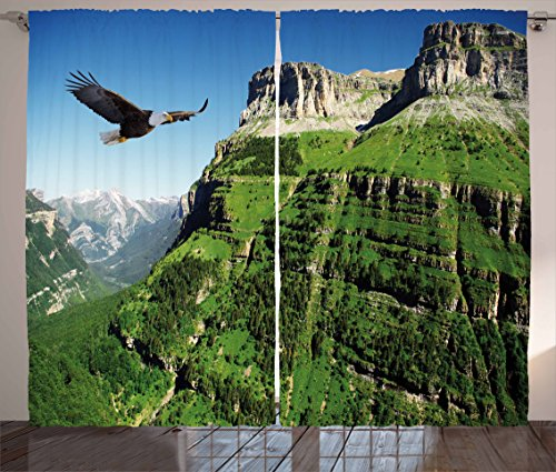 - Ambesonne Eagle Curtains, Wild Majestic Bird Flying Great Landscapes Green Mountains Forest Nature Image, Living Room Bedroom Window Drapes 2 Panel Set, 108 W X 63 L inches, Green Blue Black