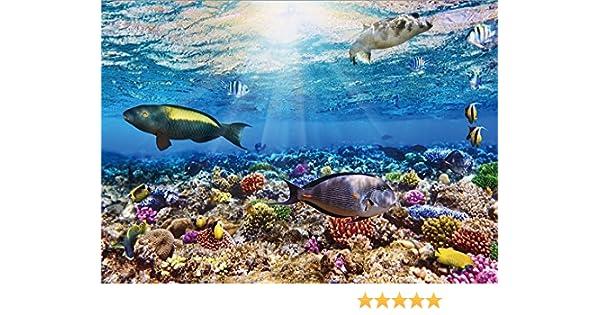 YongFoto 3x2m Undersea World fondo marino acuario 3D fondos para fotografía peces coral azul océano vela fondo de vinilo fotografía habitación decoración ...