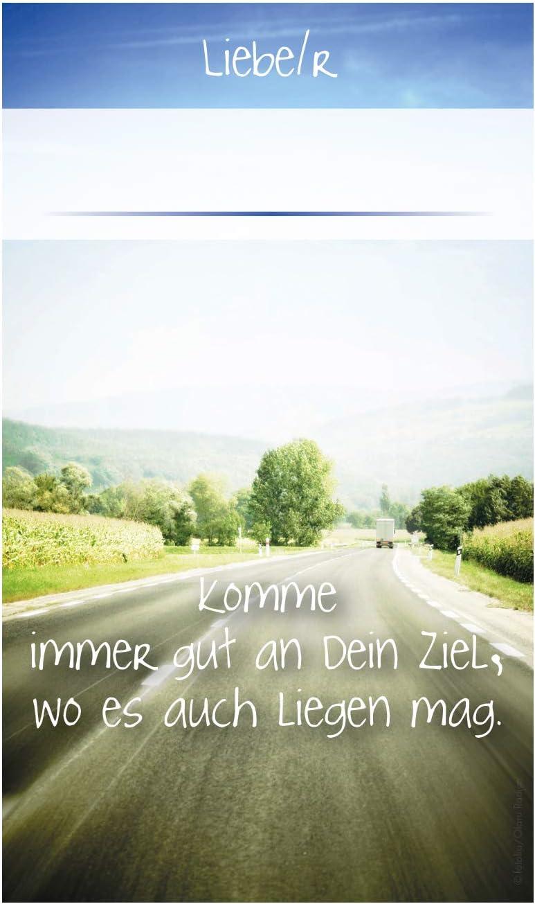 3 lilas Fritz Cox/® Automedaille Christophe Mosa/ïque M/étal