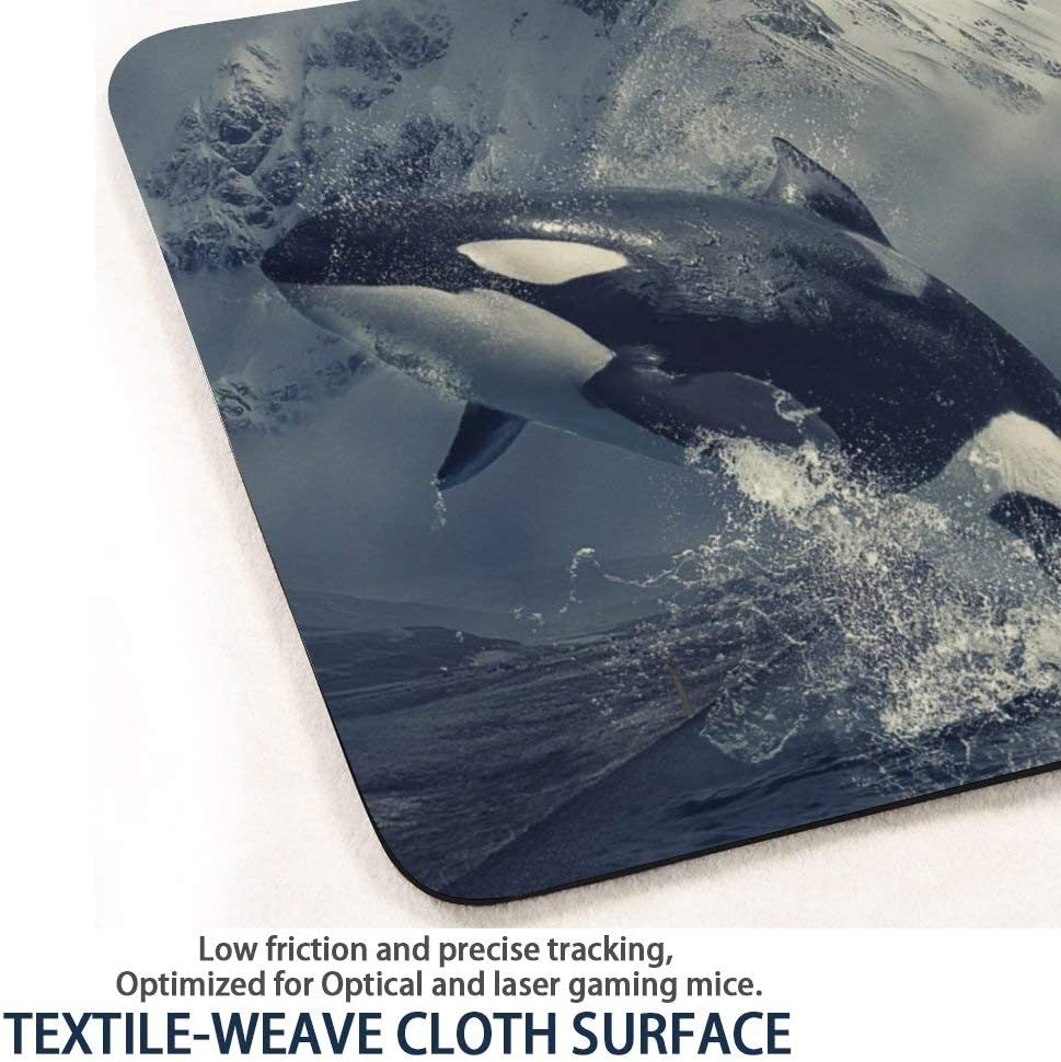 7.9 x 9.8 x 0.1 Inch Pricetail Mouse Pad Waterproof Office Mousemat for PC Computers Laptop Non-Slip Mousepads Pretty Dolphin Mouse Pads with Design