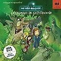 Geheimnis im Geisterwald (Die Drei Magier 2) Hörbuch von Matthias von Bornstädt Gesprochen von: Oliver Rohrbeck