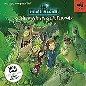 Geheimnis im Geisterwald (Die Drei Magier 2) | Matthias von Bornstädt