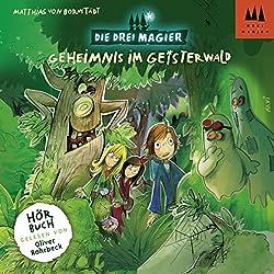 Geheimnis im Geisterwald (Die Drei Magier 2)