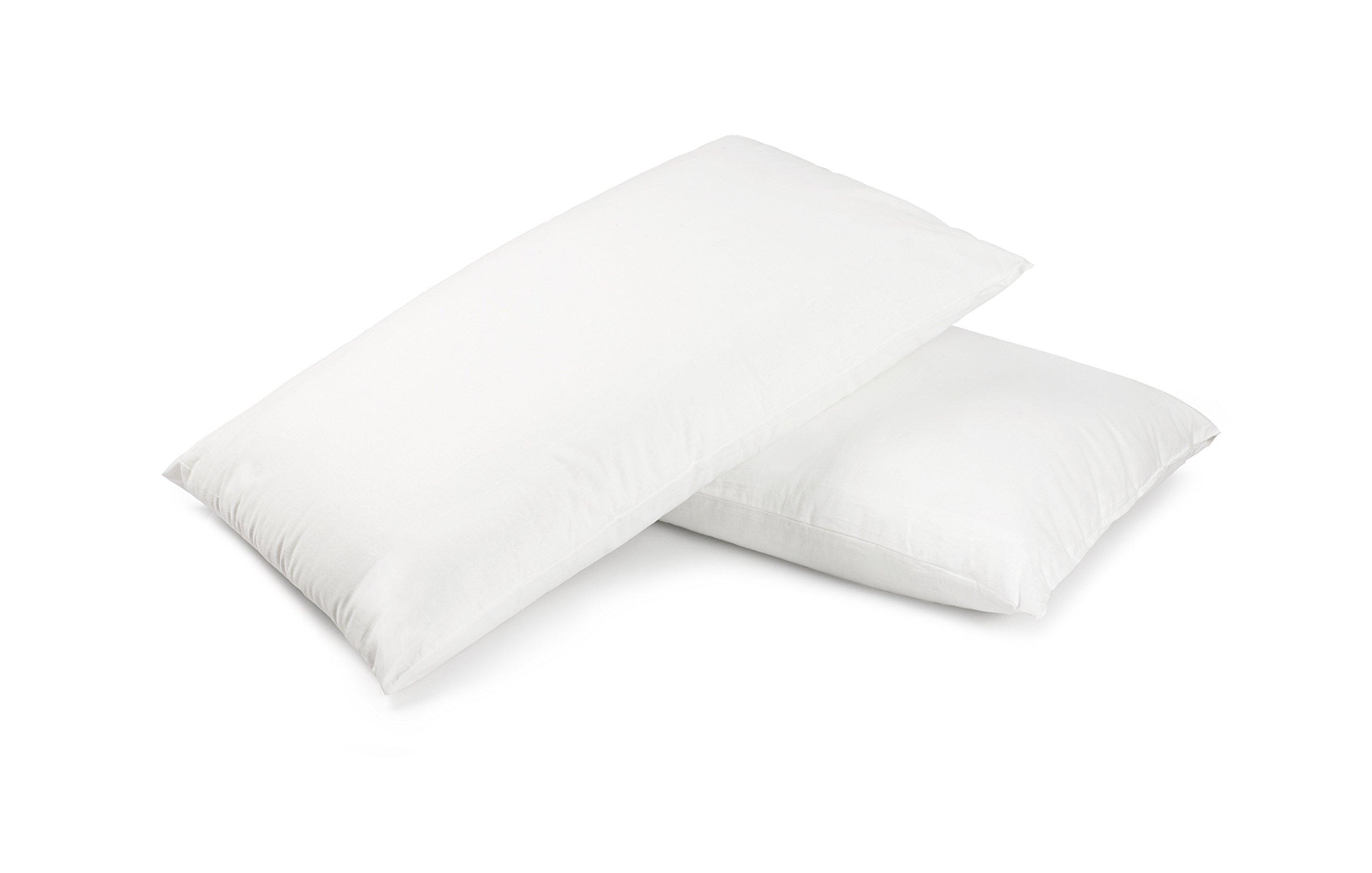Premium 100% White Goose Down Pillow, Queen Size (Set of 2)