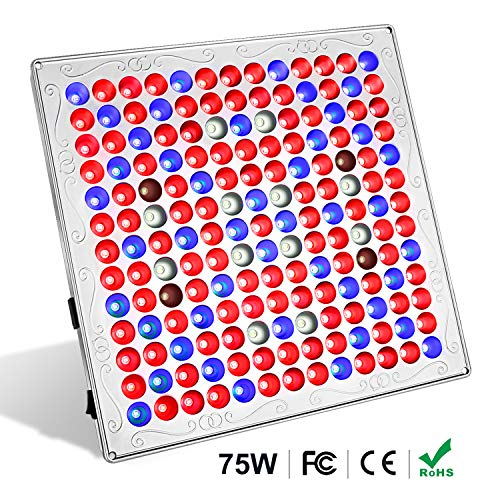 TOPLANET 75w Led Grow Light